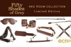 shades grey redroom