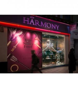 Harmony Window Jan 2019_800