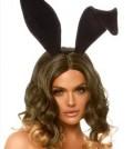 HP_bunny