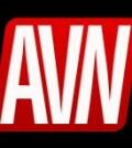 avn logosq